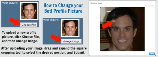How to Change Your Botl Profile Picture