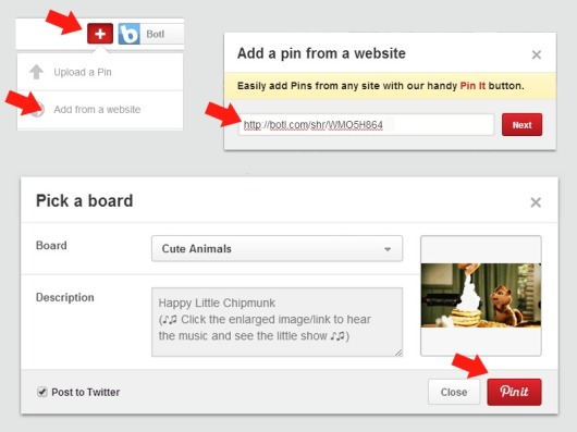 Pin Botl to Pinterest by URL