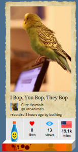 I Bop Parakeet