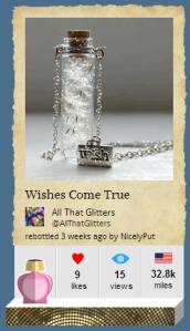 make a wish botl