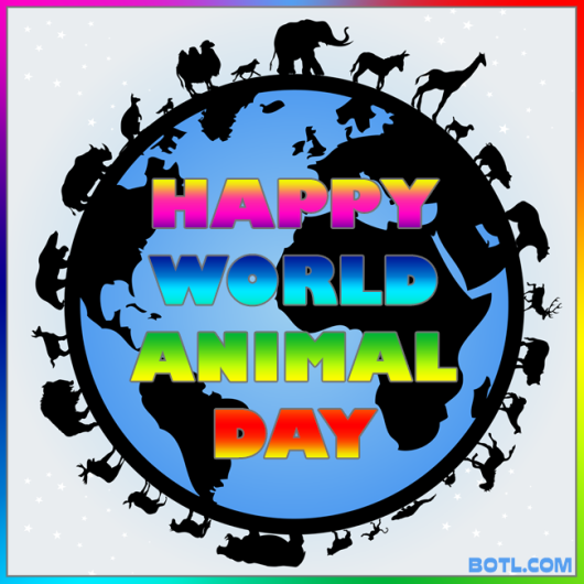 happy world animal day botl.com oct 4 2014